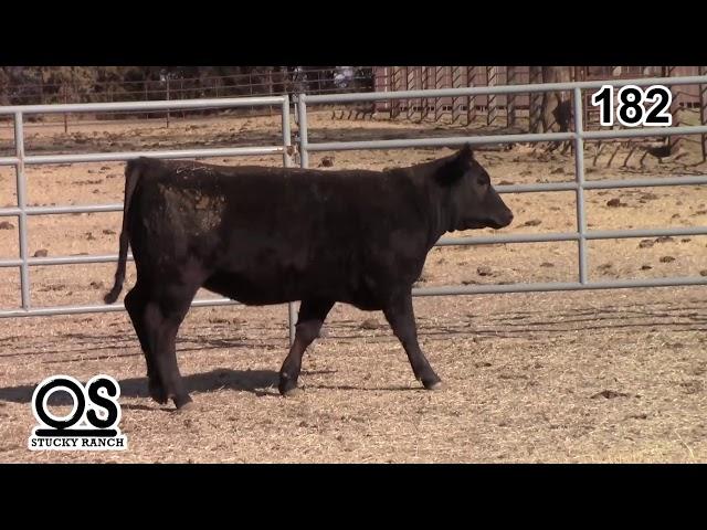 Stucky Ranch Lot 182