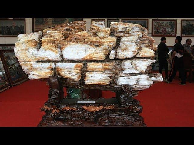 Ngắm gỗ hóa thạch kì dị xuất hiện ở Bắc Ninh