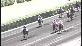Vidéo de la course PMU DI SPARTACUS