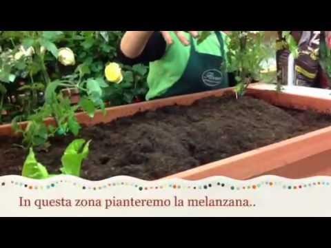 Come realizzare l\'orto in terrazzo - YouTube
