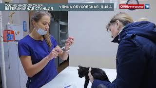 Солнечногорская ветстанция- «скорая помощь» для четвероногих