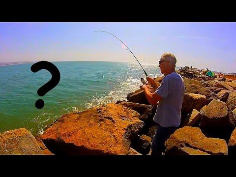 Fishing Half Moon Bay Jetty