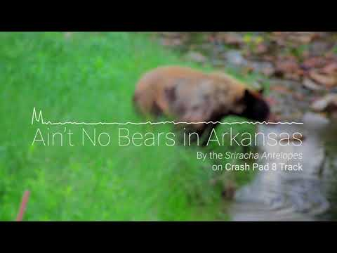 Ain't No Bears in Arkansas - Songs from Philmont