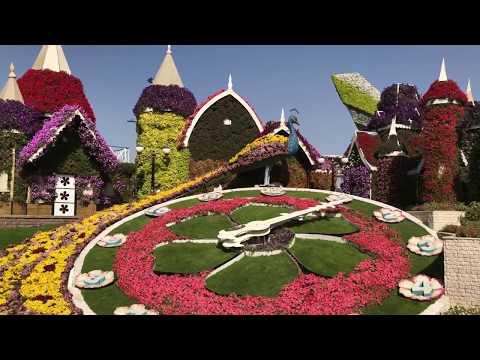 Miracle Garden Dubai 2018