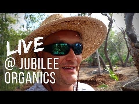 Live @ Jubilee Organics - Phase 2 - Food Forest Addition, Updates, Q&A