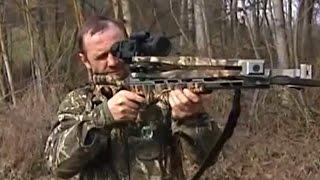 Охота с арбалетом в Беларуси