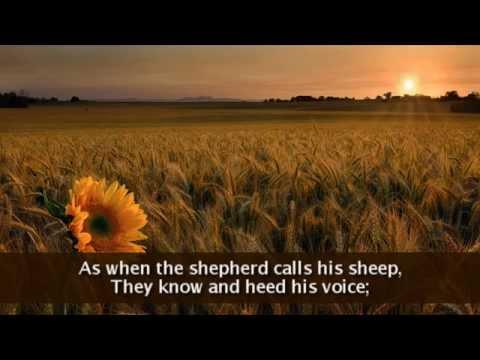 Gift of Finest Wheat (Lyrics)