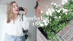 Gezellige week & meer nieuwe planten 🌱 weekvlog | All About Leonie