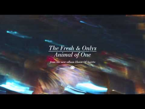 The Fresh & Onlys - Animal of One [Official Single]