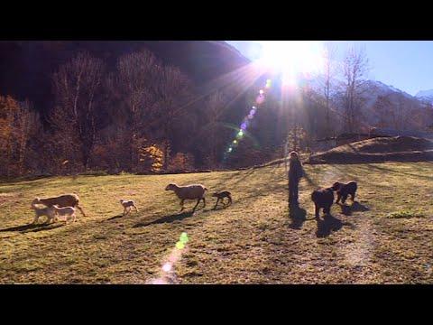 Hautes-Alpes : choisir de vivre librement dans les montagnes