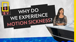 Why Do We Experience Motion Sickness? | Pop Quiz