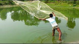 Best Net fishing video।Fish hunting by cast net।Net fishing in the village (43)