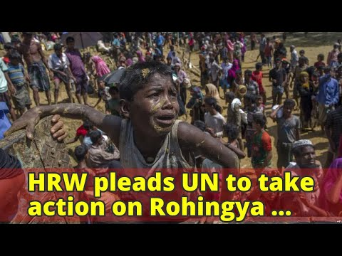 HRW pleads UN to take action on Rohingya crisis