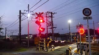 2018/12/20 JR貨物 東海道本線・大谷川踏切を爆走通過する貨物列車5本