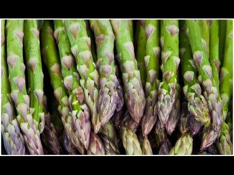 Спаржа.Сажаем семена съедобной спаржи.Первый раз сажаю Спаржу. Аспарагус.Asparagus.