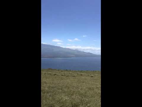 Maui wind farm hike