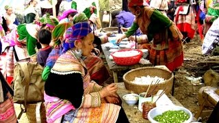 Phóng sự du lịch | Du ngoạn Hà Nội - Lào Cai - Sapa - Vân Nam - Phú Thọ 1