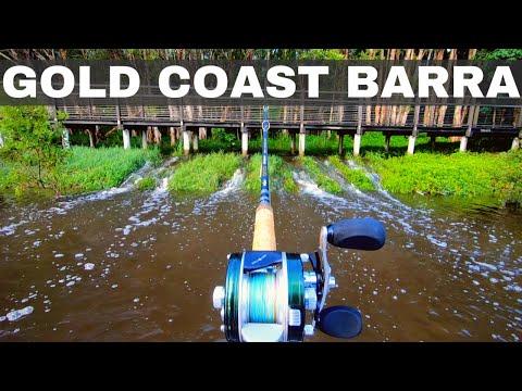 Gold Coast Barra Tactics - Barramundi Fishing Tips And Best Lures