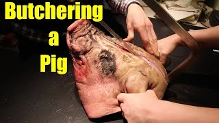 Butchering a Pig