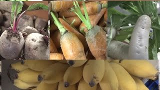 Organic Food Store in Hyderabad || Daman Organic Living