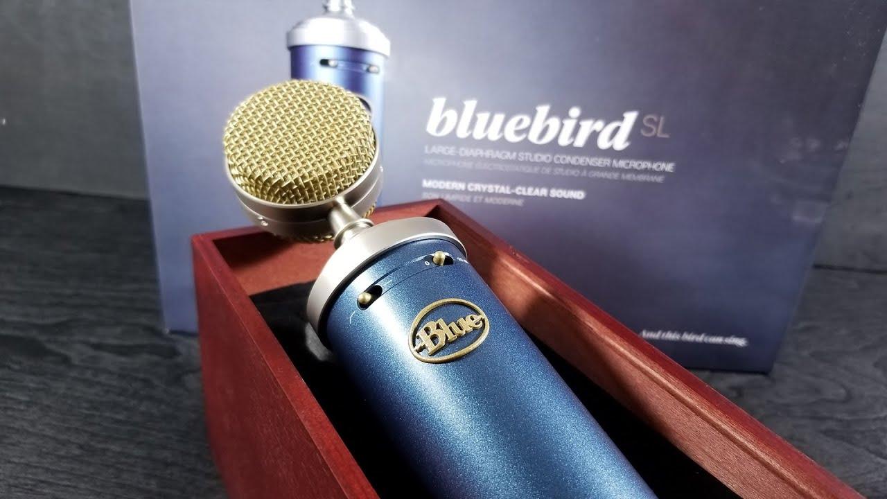 Blue Microphones Bluebird Condenser Mic: A Pro-Level Step-Up