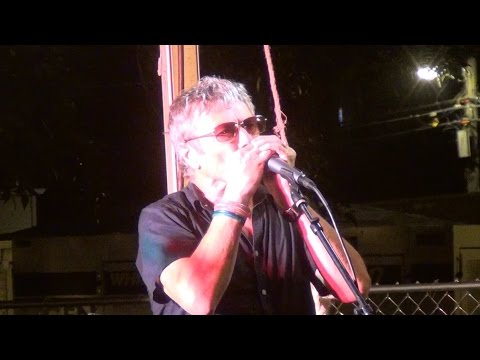 The Mekons - Hard to be Human Again LIVE @ Square Roots Fest Chicago 2015 mp3