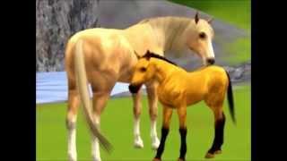 Sims 3 Pets: Spirit; Stallion of the Cimarron