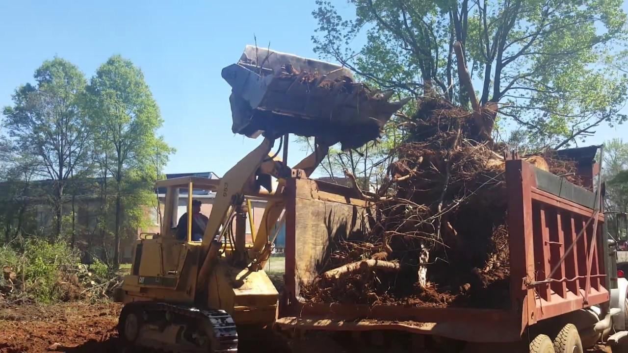 Cat 953 Track Loader Loading Stumps