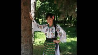 Elena Moldoveanu-Stau vecinii mei la panda