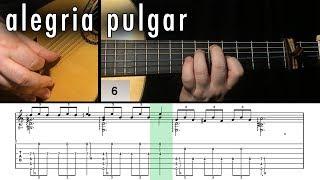 Flamenco Guitar 102 - 27 Alegria Pulgar