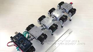 A Walking Robot with 1 DOF Legs and Passive Inter-segment Joints