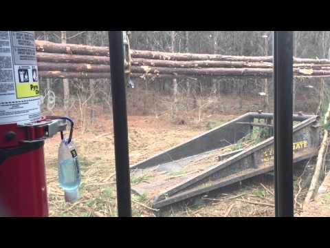 Tigercat 234 Delimbing wood with Hydra Gate - YouTube