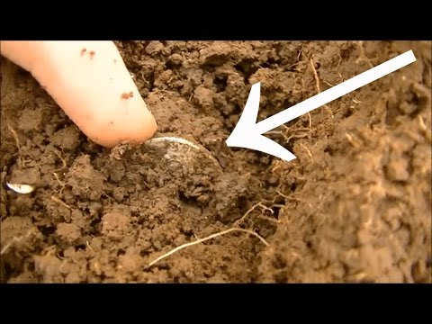 TREASURE FOUND @ OLD COLLEGE! Metal Detecting 1800's Railroad Town With JD | Silver, Coins & Relics