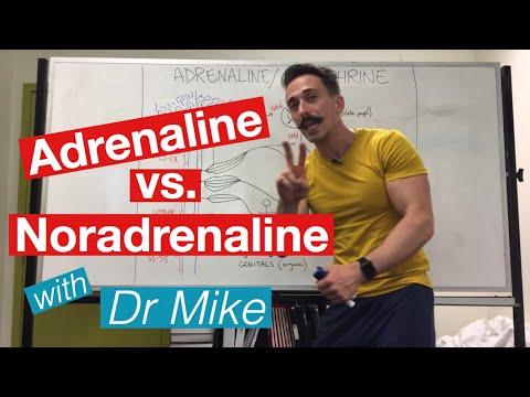 Adrenaline Versus Noradrenaline | Epinephrine Versus Norepinephrine