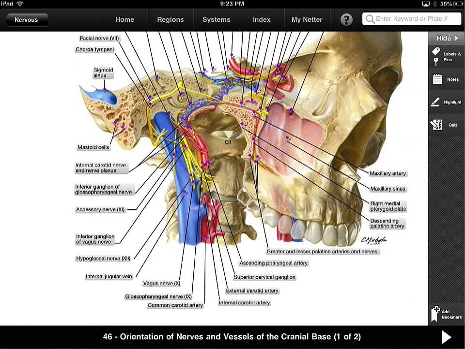 Ipad App Quick Overview Netters Anatomy Atlas Youtube