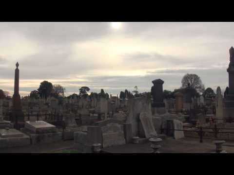 Long Form Video 1