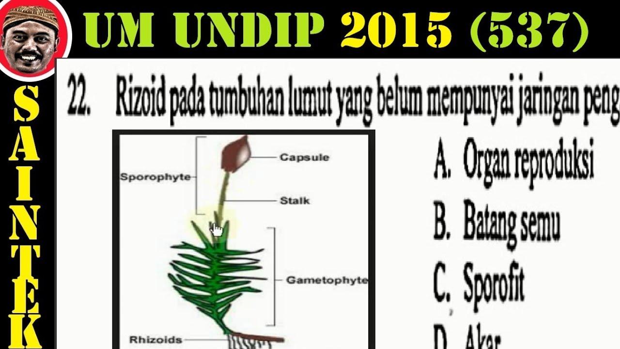 UM UNDIP 2015 Kode537, Matematika Dasar, Pembahasan No 22