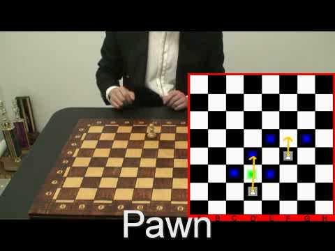 Gujarati pdf rules in chess