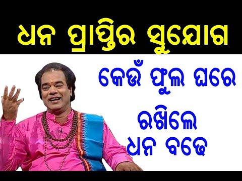 କେଉଁ ଫୁଲ ଘରେ ରଖିଲେ ଧନ ବଢେ | Sadhu Bani | Ajira Nitibani