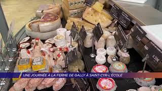 Yvelines | Une journée à la ferme de Gally à Saint-Cyr l'école