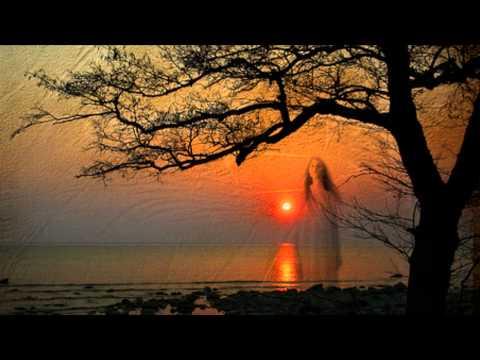 Daydream Believer ~ John Stewart - The...