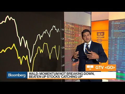 Stock Market Conditions Are Cyclically Oversold, Oppenheimer's Wald Says