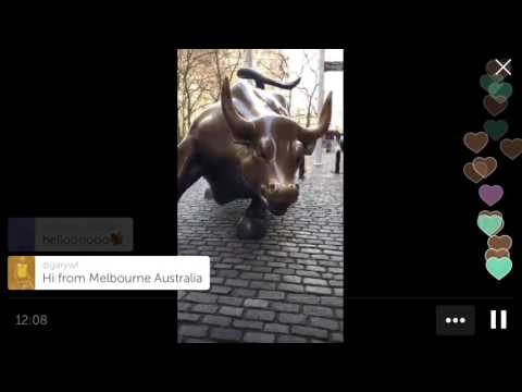 "Wall St Bull & ""Fearless Girl"" -  New York City walking Tour"