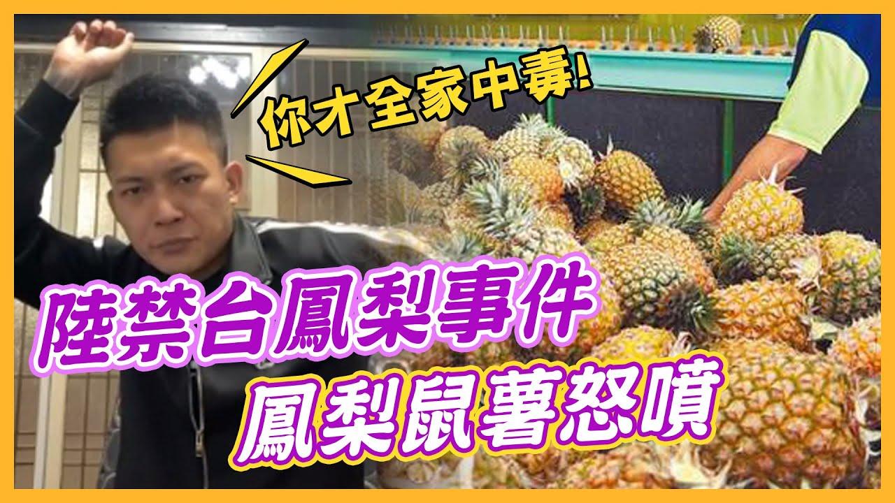 """【蝦毀冰斗】你才全家有毒!鼠薯爆笑評論""""鳳梨""""事件 │中天社會頻道"""