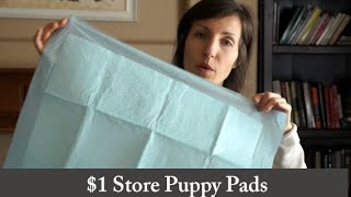 $1 Store Absorbent Pads - A Must Have! // Prepper