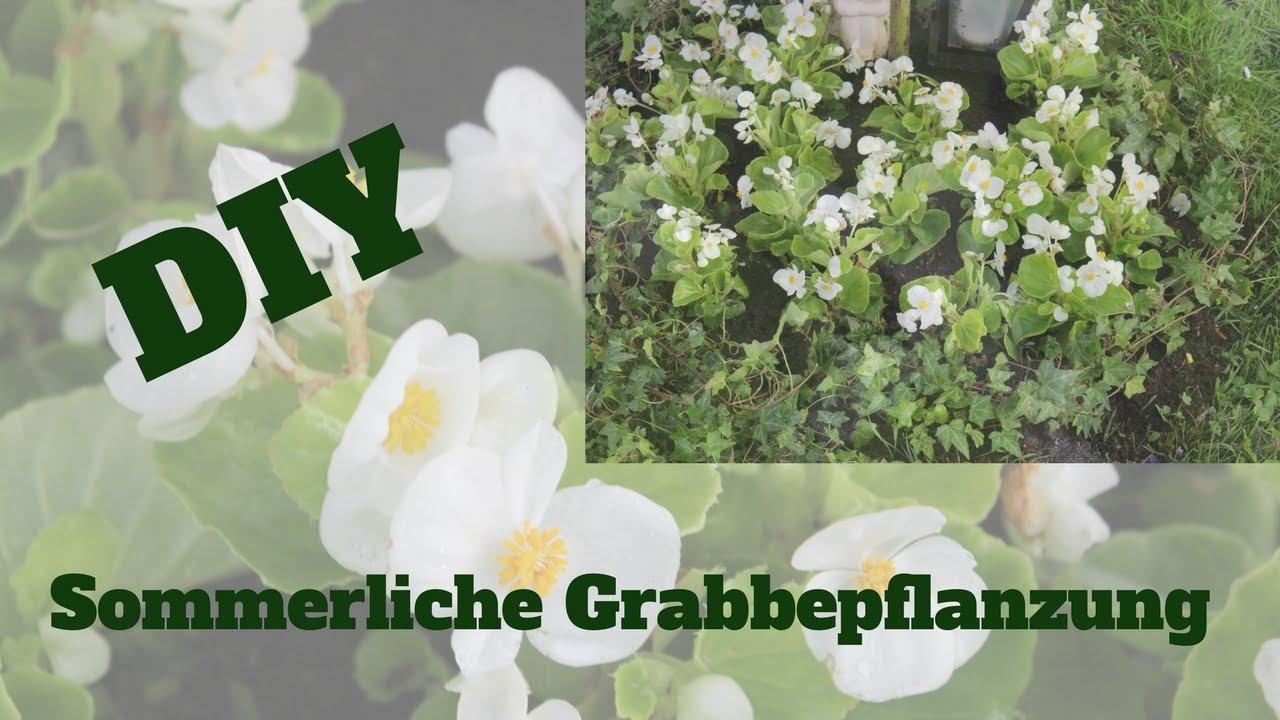 Faszinierend Begonien Pflege Galerie Von Diy: Sommerliche Grabbepflanzung Mit