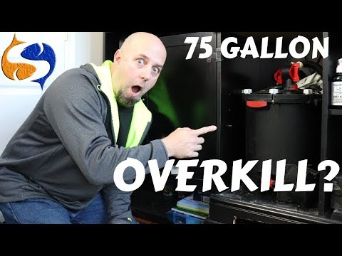 Installing A Fluval FX-6 On A 75 Gallon, Overkill? Going Small Is For Losers!