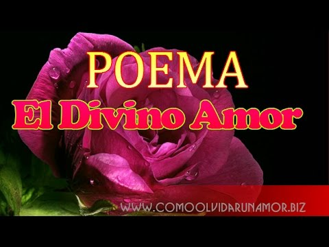 El Divino Amor Poema de Amor de Alfonsina Stormi