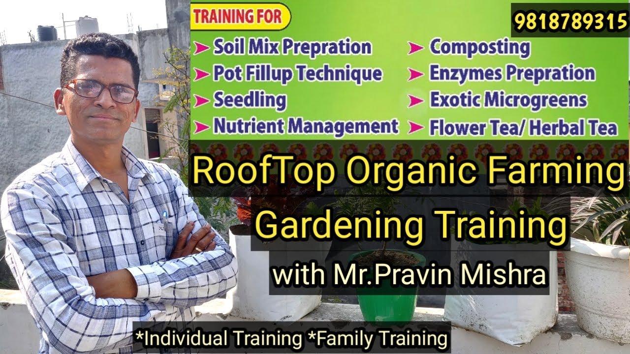 Download Terrace Gardening | Home Gardening Training | Organic Terrace Garden