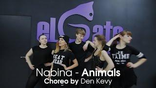 Nabina - Animals I Dance Choreo by Den Kevy #elgatostudio